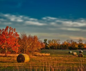 Kansas: mejor época para visitar