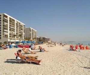 Tampa: mejor época para visitar