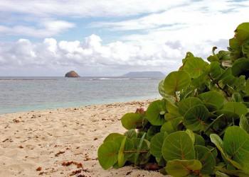 La Desirade (Isla La Deseada)