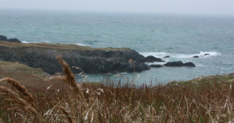 San Pedro y Miquelón